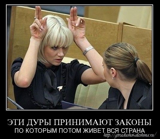 FotoSketcher - дуры-депутаты-госдумы