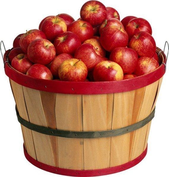 кадка с яблоками